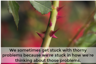 Stuck with a thorny problem? The way out might surprise you