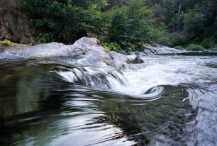 river eddy